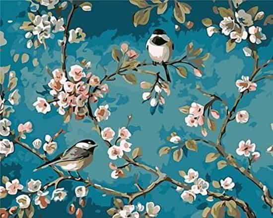 Schilderen op nummer - Vogels en bloemen - Riefco ®