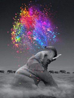Schilderen op nummer - Kleurrijke olifant 🎨