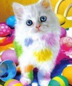 Schilderen op nummer - Gekleurde kat 🐈