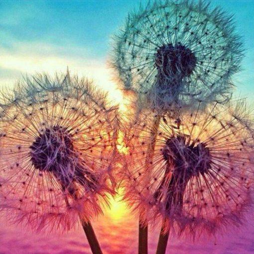 Schilderen op nummer - Bloemen bij zonsondergang 💐