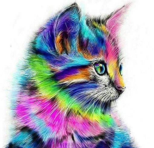 Schilderen op nummer - Kat in verschillende kleuren 🐈