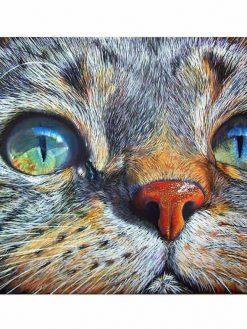 Schilderen op nummer - Katten ogen blauw