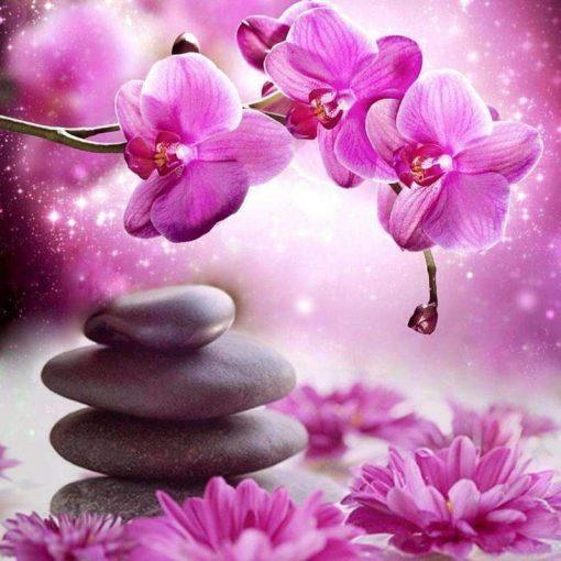 Schilderen op nummer - Magische bloemen 💐