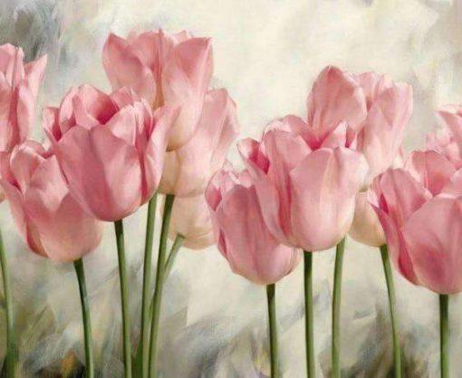 Schilderen op nummer - Roze tulpen 💐