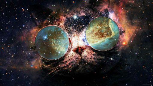 Schilderen op nummer - Space kat 🐈
