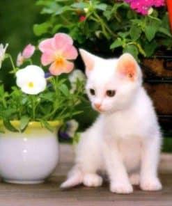 Schilderen op nummer Witte Kat met Bloemen in Vaas