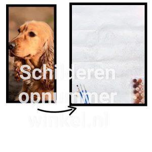 Schilderen op nummer eigen foto