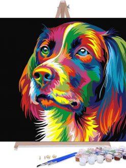 Gekleurde Hond