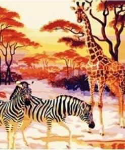 Afrika Met Frame