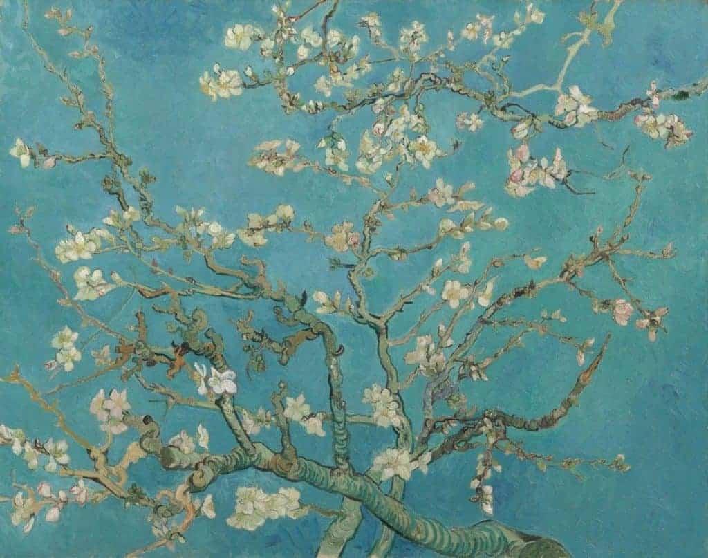 Van Gogh - Amandelbloesem