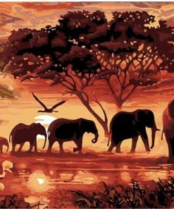 Yeah This Is Africa!