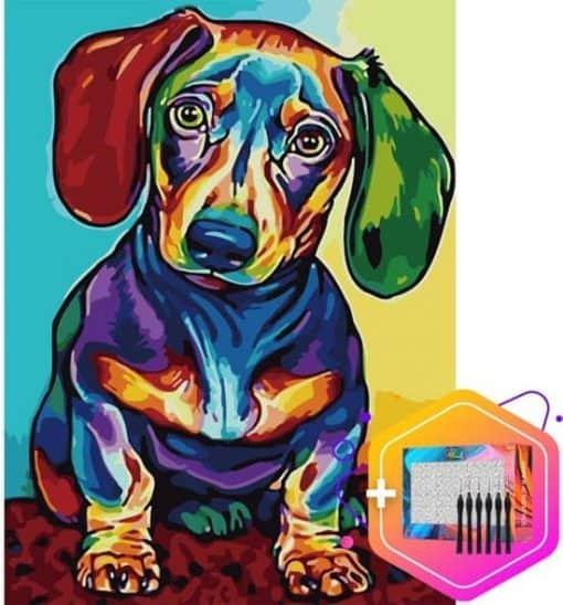Teckel Multicolor