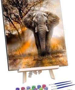 Schilderen op nummer - Machtige Olifant 🐘