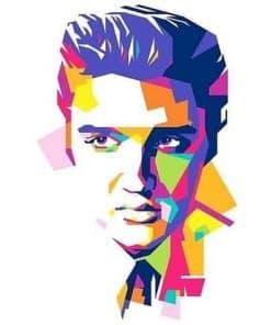 Elvis Presley abstract