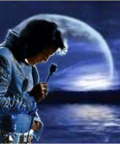 Elvis Presley in de avond